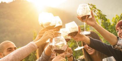 social, host, party, alcohol