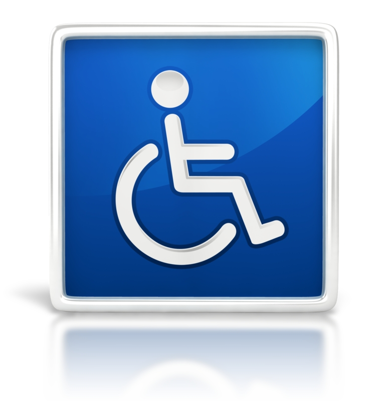 Americans with Disabilities Act As Amended  - ADAAA