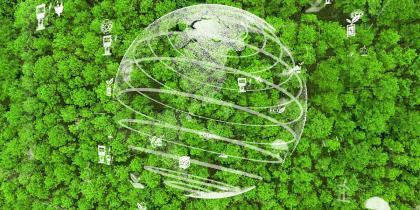 Global International Carbon Market Across a globe above a green rainforest