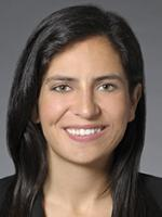 Nicole A. Saleem, Complex civil litigation, Financial Services, Katten Law Firm