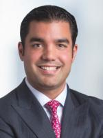 Vincent Indelicato Corporate Attorney Proskauer Rose New York, NY