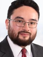 Alex Hammershaimb Environmental Tort Attorney Wilson Elser Moskowitz Edelman & Dicker LLP