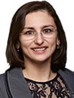 Dana R. Bucin, Murtha Cullina, green card applications lawyer, work visas attorney