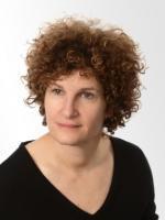 Felice B. Ekelman, Jackson Lewis, compensation disputes lawyer, enforcement of restrictive covenants attorney