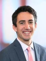 Geoffrey A. Friedman, Mintz Levin, Litigation lawyer, Boston Attorney