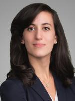 Alison E. Gabay, Labor & Employment Law Clerk, New York, Epstein Becker Green Law Firm