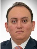 Juan Carlos De Lucio Carrasco Litigation Attorney Foley & Lardner Mexico City