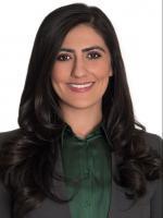 Nikku D. Khalifian Business Litigation Lawyer Womble Bond Dickinson Law Firm