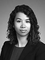 Liên H. Payne, Sheppard Mullin, commercial litigation lawyer, tort contract disputes attorney