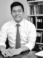 David Pi Partner Chicago Litigation and Dispute Resolution