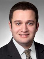 Seth Stern, Litigation lawyer, FVLD