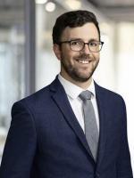 Samuel A. Rasche Attorney Environmental Schiff Hardin Law Firm Chicago