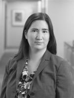 Suzanne L. Wahl, Schiff Hardin, antitrust attorney, trade regulation lawyer, Ann Arbor