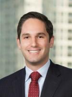Adam Goldman Investment Attorney Vedder Price