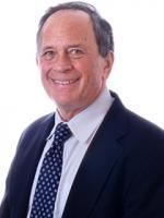 Daniel Press, Van Ness Feldman Law Firm, Washington DC, Environmental and Energy Litigation Attorney