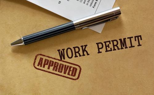 H1B Employer Visa Immigration