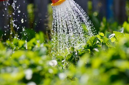 EPA: New Emergency Guidelines for Water Systems