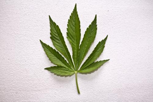Issues With Legalizing Recreational Marijuana in Illinois