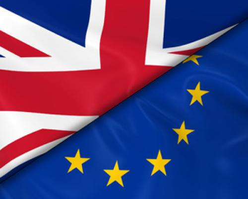 BREXIT  :  TRANSITION 2020 cover image