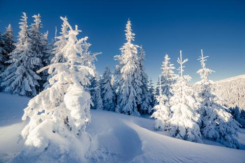 Slip and Fall Accidents During Winter Storms